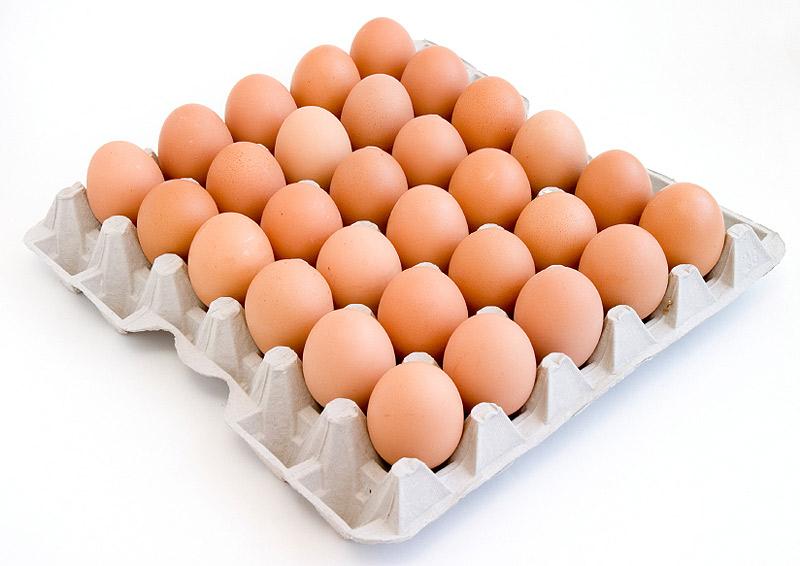 Ячейки для яиц