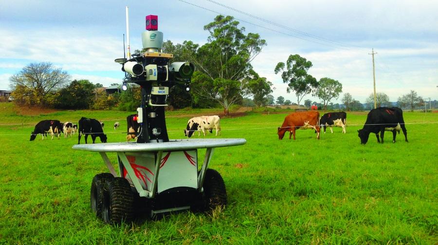 реферат робототехника в сельском хозяйстве вас